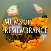 Mums of Remembrance